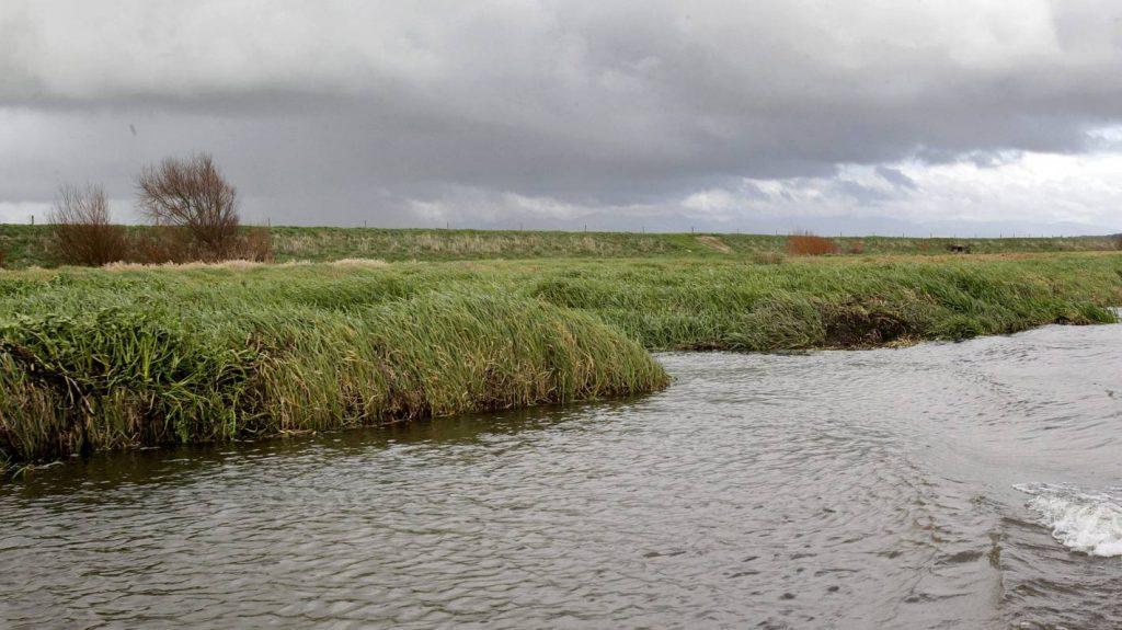 Preliminary investigation begins into River Loop Rejuvenation Project